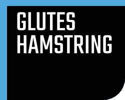 Glutes/Hamstrings